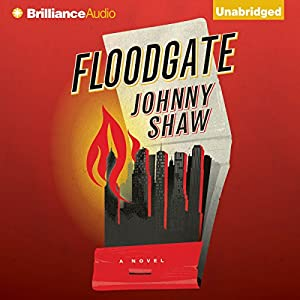 Floodgate Audiobook