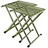 E-jades Folding Stool Camp Stools 2Pack 17.9 in