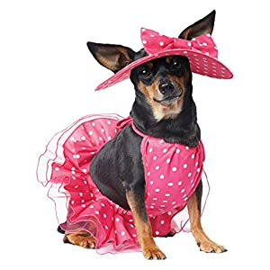 California Costumes Collections Pretty in Pink Dog Costume, Large