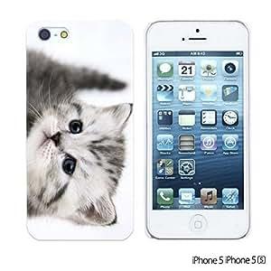 OnlineBestDigital - Cartoon Pattern Hard Back Case for Apple iPhone 5S / Apple iPhone 5 - White Cat