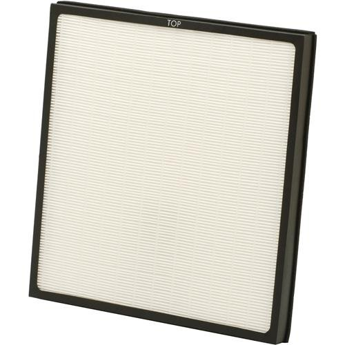 Woodstock International D4492 Replacement Filter for W1746 Filter by Woodstock