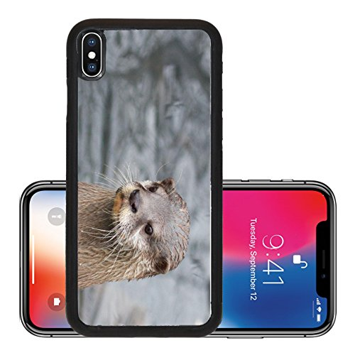 Liili Premium Apple iPhone X Aluminum Backplate Bumper Snap Case Closeup of a n Asian small clawed otter at a river bank Photo 19903288]()