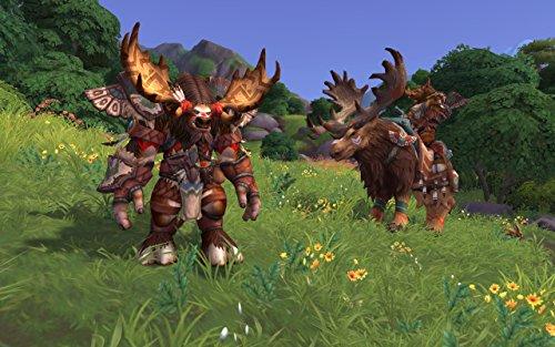Amazon com: World of Warcraft Battle for Azeroth - PC