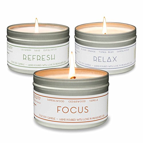 Gold Wave Goods Scented Candles - Relax (Blood Orange/Sandalwood), Focus (Sandalwood/Vanilla), Refresh (Eucalyptus) - Natural Soy Wax Aromatherapy 8 oz Candles, 3-Pack, Made in USA