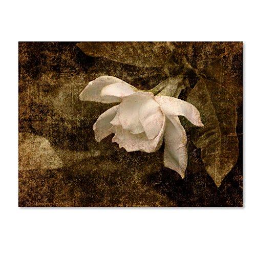 Trademark Fine Art Cape Jasmine Gardenia 2 by Jai Johnson, 14x19-Inch Canvas Wall Art (Cape Gardenia Jasmine)