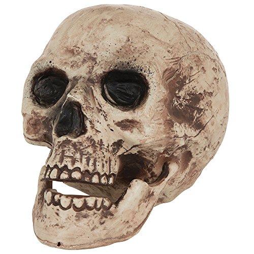 Bristol Novelty HI333 Skull, Brown/Beige, One Size