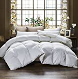 Egyptian Bedding 1000 Thread Count King / California King (Cal King) Oversized Siberian Goose Down Comforter - 100% Egyptian Cotton, 750FP, 50oz, 1000TC, White, Allergy Free