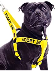 Adopt ME Yellow Color Coded Nylon Non-Pull Large L-XL Dog Harness (New Home Needed) Donate to Your Local Charity