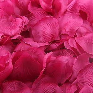 1000 Pcs Artificial Silk Rose Petals, Tuscom Fake Rose Flower Petals for Wedding Party Confetti Flower Girl Bridal Shower Valentine Day Romantic Decor Hotel Home Decoration (Watermelon red) 4