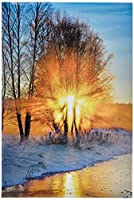 WindowPix 12x18 Inch Decorative Static Cling Window Film Blazing Tree on Icy Road . Printed on Clear for Window Glass panels. UV protection, Energy Saving.