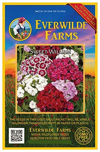 (Everwilde Farms - 2000 Sweet William Wildflower Seeds - Gold Vault Jumbo Seed)