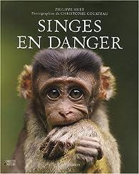 Singes en danger par Philippe Huet