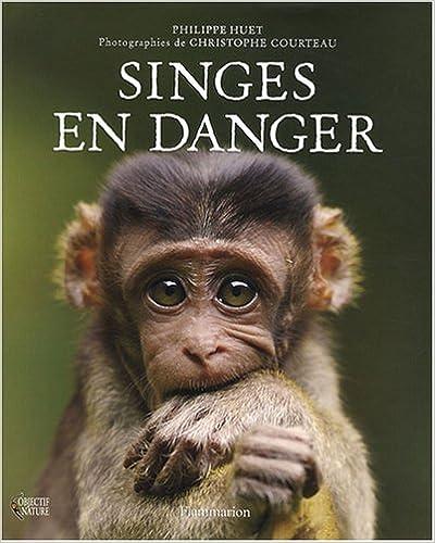 Lire Singes en danger pdf