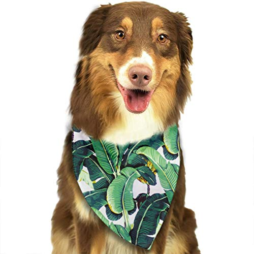 Dog Leaves Bandana - LOVE CORNER Martinique Banana Leaf Dog Bandanas Pet Scarf Cute Puppy and Pet Birthday Bandana Scarves, Triangle Headchief for Party, Wedding, Kids Baby Girl Boy Dog