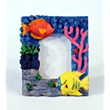 Handpainted Tropical Fish Photo Frame, Holds 2 X 3 Photo Picture by CP Technology