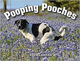 Best Yankee Swap Gifts 2020 2020 Pooping Pooches White Elephant Gag Gift Calendar: Gag Gifts