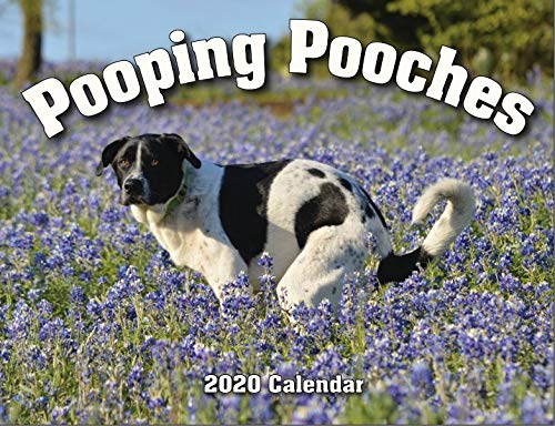 2020 Pooping Pooches White Elephant Gag Gift Calendar (Him Gifts Christmas For 2019)