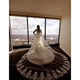 ElieHouse Women's 2 Tiers Laces Chapel Wedding Bridal Veil With Free Comb E64