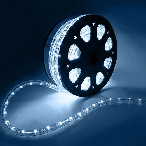 Customizable Led Lights in Florida - 7