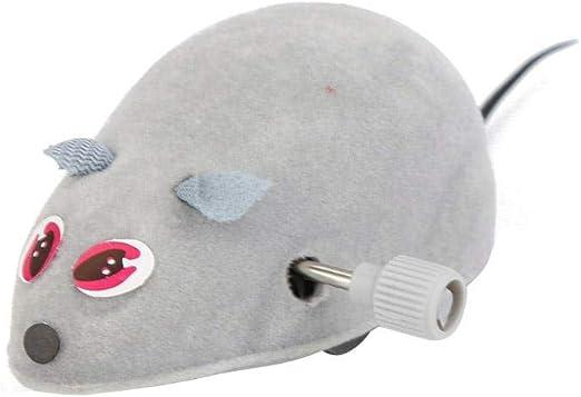 Li-ly - Juguetes para Gatos, Ratones, Juguete para Gato, Gatito, Juguete Divertido y práctico: Amazon.es: Productos para mascotas