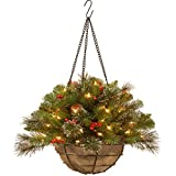 National Tree 20 Inch Crestwood Spruce Hanging Basket with Silver Bristle, Cones, Red Berries and 50 Battery Operated Warm White LED Lights (CW7-300-20H-B1)