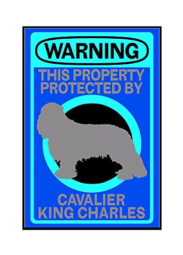 Wall Framed Cavaliers (Cavalier King Charles - Warning (12x18 Framed Gallery Wrapped Stretched Canvas))