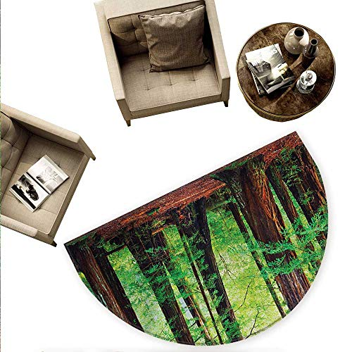 Woodland Semicircular Cushion Redwood Trees Northwest Rain Forest Tropical Scenic Wild Nature Lush Branch Entry Door Mat H 59