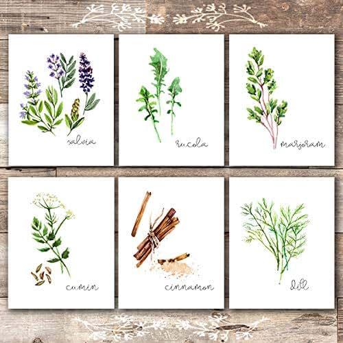 Amazon.com: Kitchen Herbs Art Prints