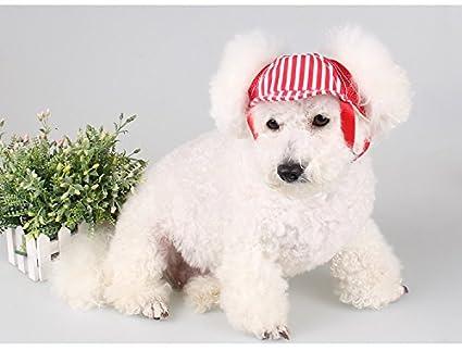 para perros peque/ños Sombrero de b/éisbol para mascotas de moda para viaje al aire libre medianos y grandes. protecci/ón solar