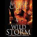 Wild Storm: A Derrick Storm Thriller Hörbuch von Richard Castle Gesprochen von: Robert Petkoff