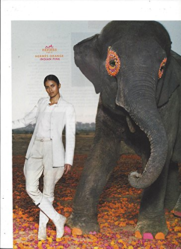 print-ad-for-2008-hermes-orange-indian-pink-elephant-scene