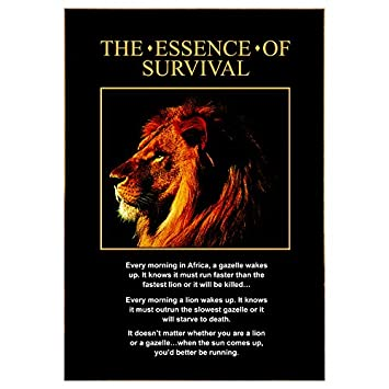 The Essence Of Survival Motivational Poster Amazon Home Kitchen