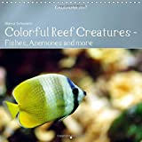 Colorful Reef Inhabitants - Fishes, Anemones and More 2017: Tropical Reefs Provide a Wide Variety of Animals and Colors (Calvendo Animals)