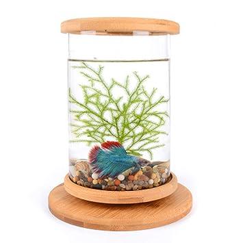 Tanque de peces betta peces acuario peces escritorio de casa botella ecológica oficina creativa vidrio templado