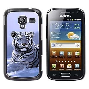 Stuss Case / Funda Carcasa protectora - Winter Snow Tiger White Blue Cold - Samsung Galaxy Ace 2 I8160 Ace II X S7560M