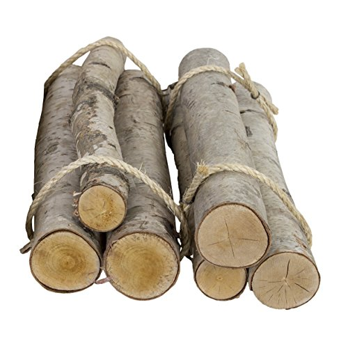 Walnut Hollow Value Pack 6 Pieces Rustic Birch Logs for Home Decorating and Weddings ()