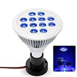 Cheap Esbaybulbs 36W Blue LED Plant Grow Light Bulb for Greenhouse Indoor Plant Flower Veg Seeding