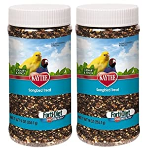 Kaytee Forti-Diet Pro Health Canary and Finch Songbird Treat, 9-oz jar (2 Pack) 70