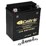 Caltric Agm Battery Compatible With Suzuki Ltf500F Lt-F500F Quadrunner 500 4X4 1998 1999-2002