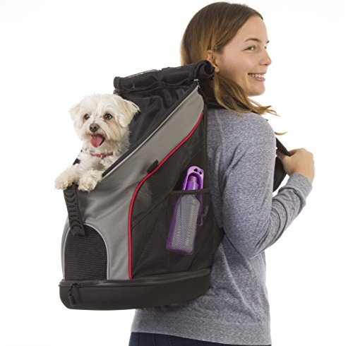 jack-and-dixie-airline-compliant-34-liter-top-and-bottom-zippered-backpack-pet-carrier-mesh-windows-