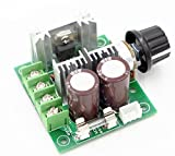 RioRand (TM) 12V-40V 10A PWM DC Motor Speed Controller w/ Knob--High Efficiency, High Torque, Low Heat Generating with Reverse Polarity Protection, High Current Protection