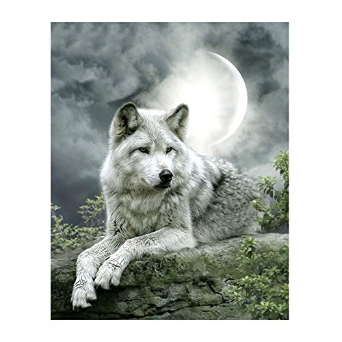 Whitelotous 5D Diamond Painting, DIY Rhinestone Embroidery Crystals Pictures Kit, for Home Wall Decor Craft,11.81 X 15.74inch (Moonlight Wolf)
