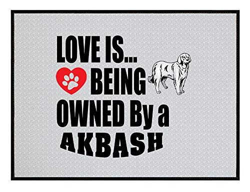HUS-PLT Akbash Dog Love is Being Owned Kitchen Door Welcome Floor Mat 1