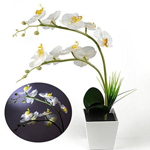 Leds 9 À Artificielle En Lampe Pot Piles Ledmomo Fleur kX8wZON0nP