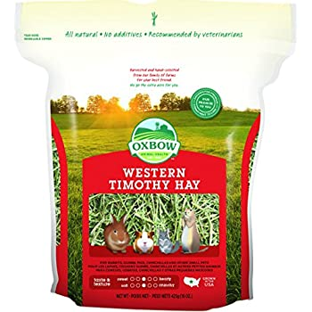 Oxbow Animal Health Western Timothy Hay for Pets, 15-Ounce