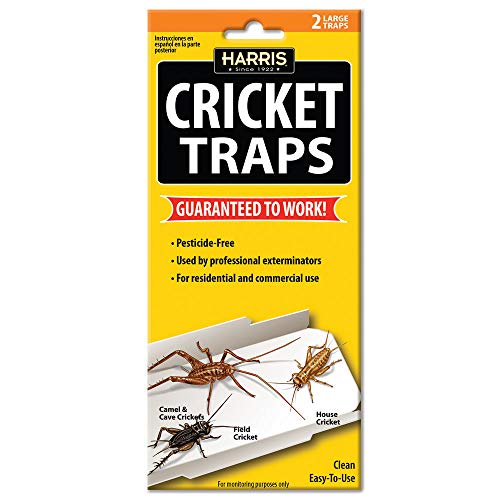 Harris Cricket Glue Traps (2-Pack) (Best Way To Kill Crickets In Home)