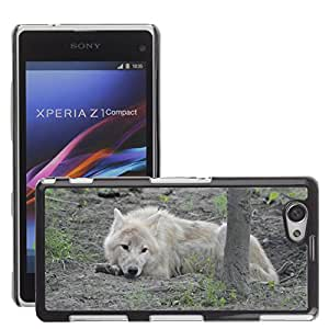 GoGoMobile Slim Protector Hard Shell Cover Case // M00124501 Wolf Predator European Wolf Gray Wool // Sony Xperia Z1 Compact D5503