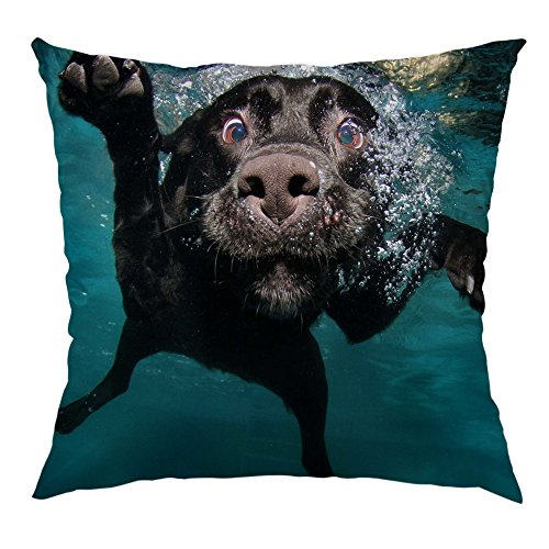HGOD DESIGNS Dog Pillow Cover,Funny Underwater Dog Satin Cushion Throw Pillow Case Square Standard Home/Sofa Decorative for Men/Women 18x18 inch Black,Green,Pink ¡