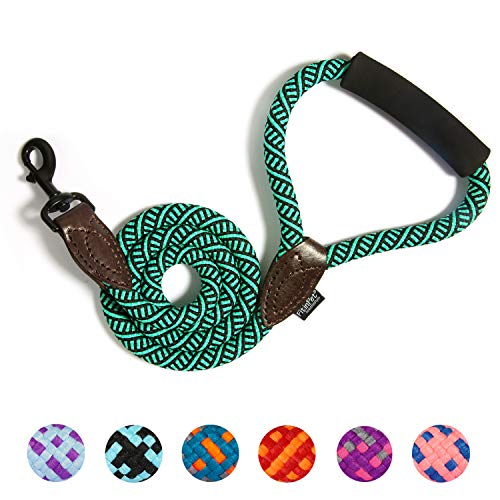 FitinPet Dog Leash with Comfortable Padded Handle Durable Rope 4 FT for The Perfect Length of Control Strong for Small Medium and Large Dogs - (Malachite Green, Large)