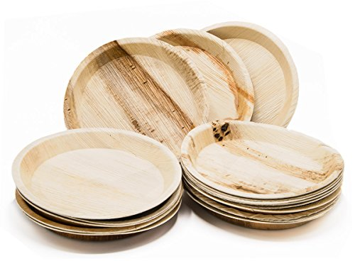 Amazon.com Eco-Friendly Disposable Dinnerware Set of 75 Party Supplies Large 10\  Round Palm Leaf Plates (25) Wooden Forks(25) \u0026 Knives (25) - Natural ...  sc 1 st  Amazon.com & Amazon.com: Eco-Friendly Disposable Dinnerware Set of 75 Party ...